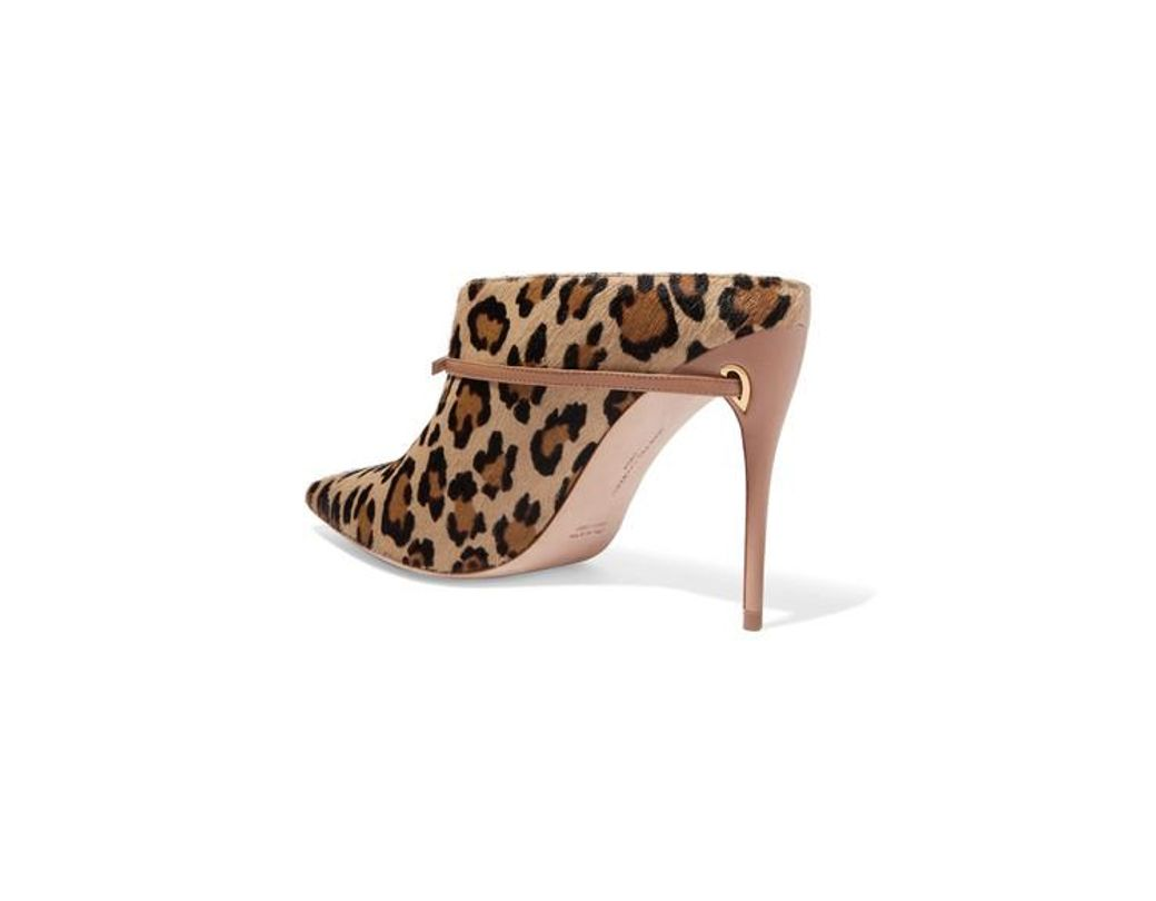 291ada5a1a81 Jennifer Chamandi Alberto 105 Two-tone Leopard-print Calf Hair And Leather  Mules in Brown - Lyst