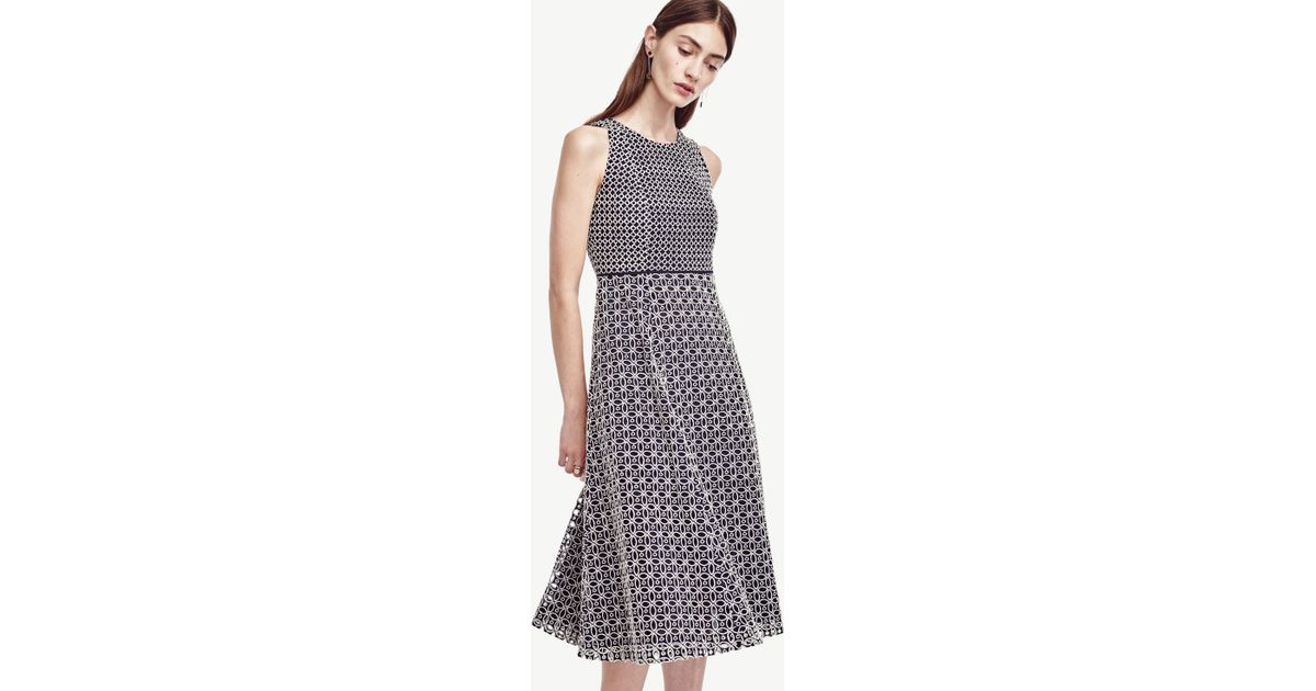 8e6e2ab453fd Lyst - Ann Taylor Petite Double Eyelet Dress in Blue