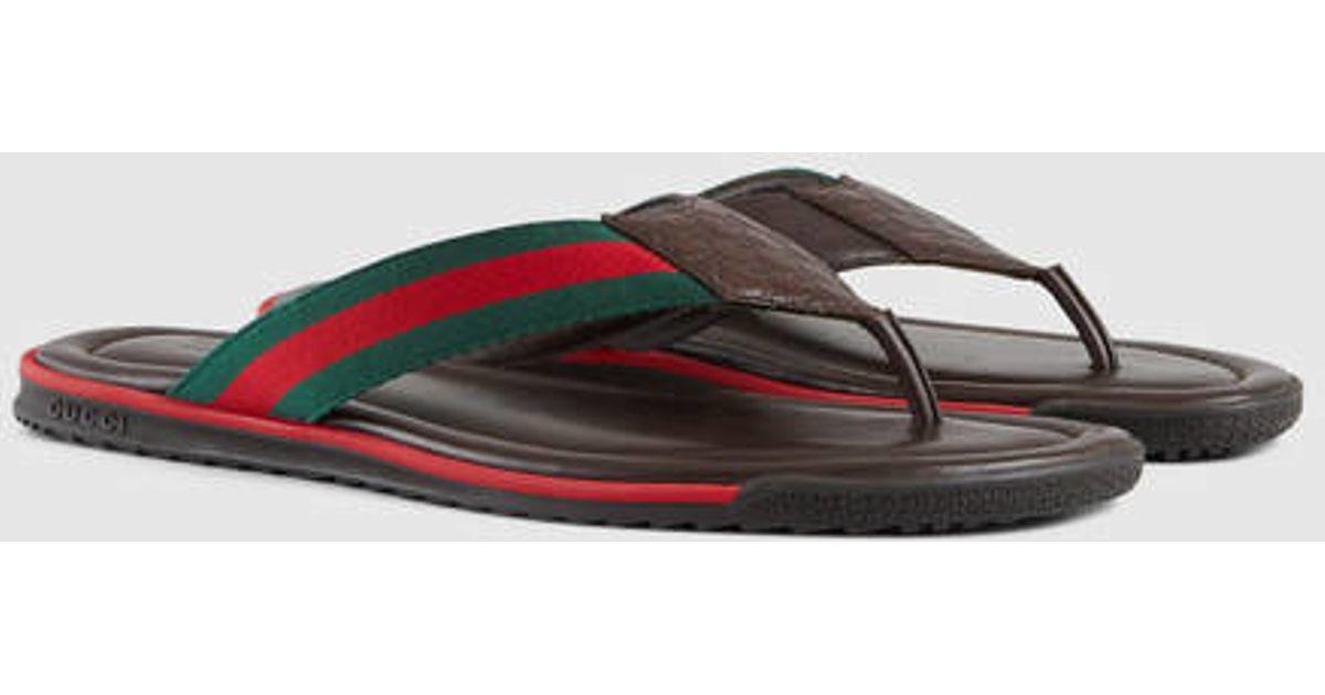 a169bfa2fdd6 Lyst - Gucci Web Strap Thong Sandal in Brown for Men