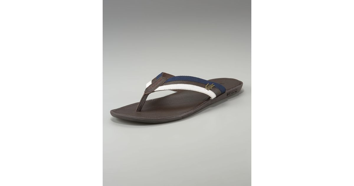ad907dd3c242 Lyst - Lacoste Carros Striped Flip-flop in Brown for Men