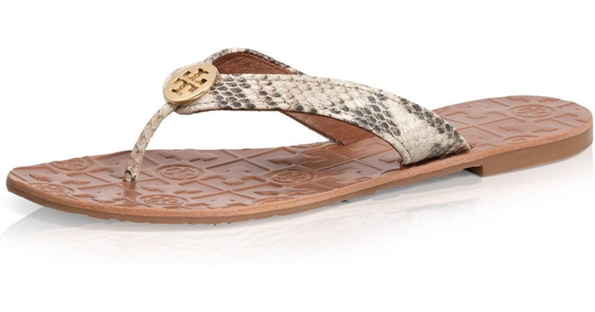 b523889697fd5 Lyst - Tory Burch Python Printed Thora Sandal in Brown