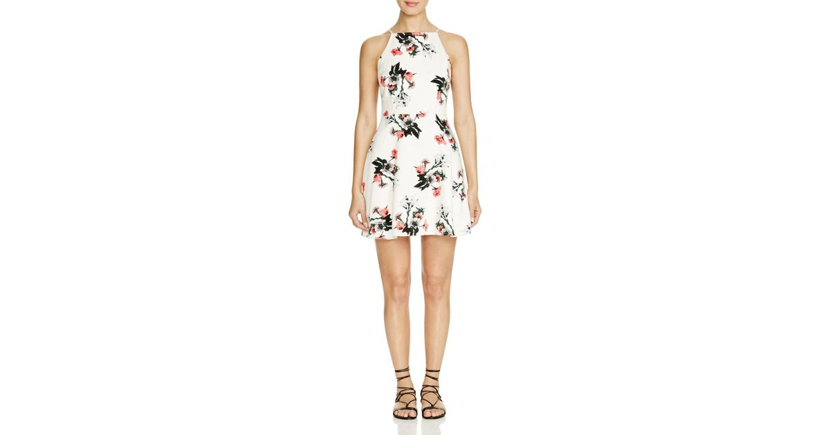 dd532d219b570 Lyst - BB Dakota Olive Floral Fit And Flare Dress - Bloomingdale's Exclusive