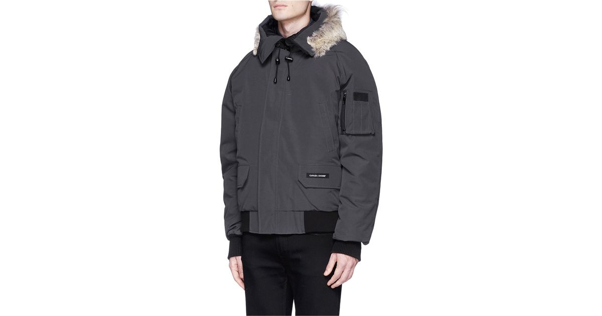 Canada Goose hats replica authentic - Canada goose Chilliwack Fur-Trimmed Bomber Jacket in Gray for Men ...