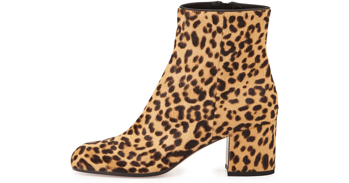 gianvito leopard print calf hair ankle boots in