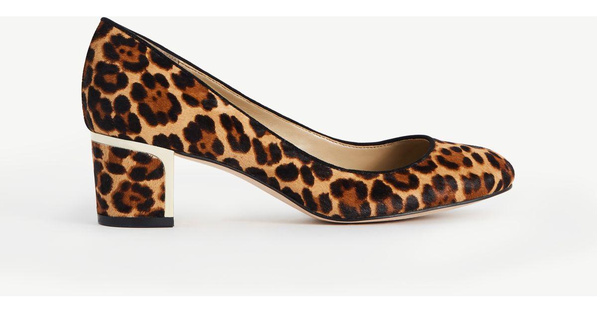 43b65b7aed1c Lyst - Ann Taylor Olive Leopard Print Haircalf Pumps in Brown