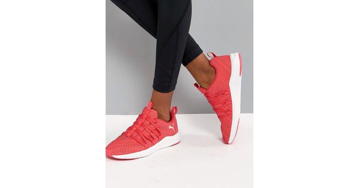 37de17fda2f ... united kingdom ea1c2 0476b Lyst - Puma Prowl Alt Weave Training Sneakers  In Pink in Pin ...