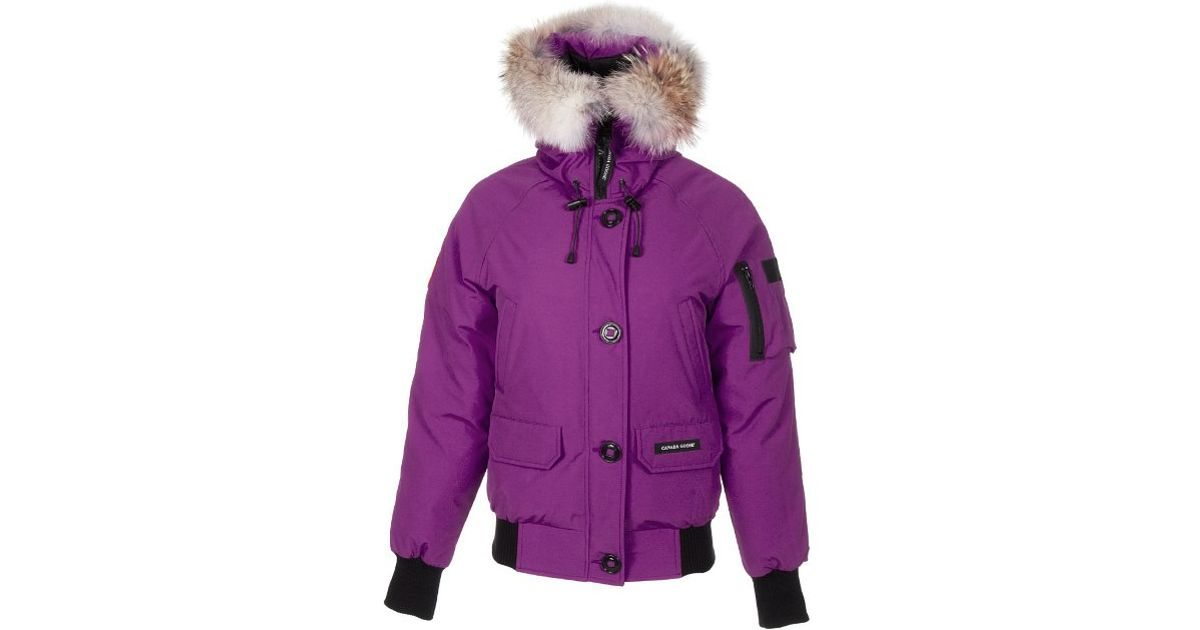 Canada Goose womens online authentic - Canada goose Ladies Chilliwack Bomber in Purple (berry) | Lyst