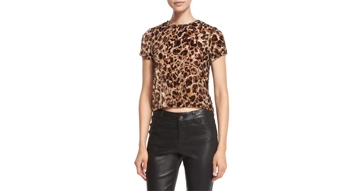 c7ec4bc6 Alice + Olivia Deandrea Leopard-print Cropped T-shirt in Black - Lyst