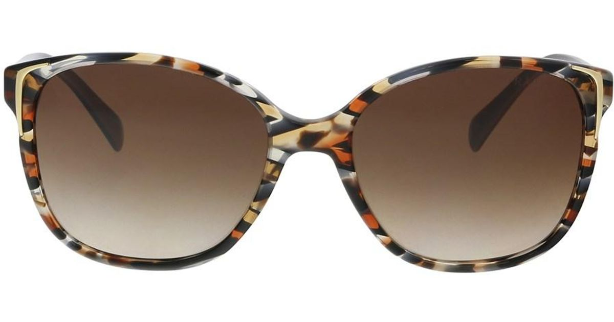 54bee07194973 ... aliexpress lyst prada pr01os co56s1 havana ears avio blue square  sunglasses in brown 7eb62 050bf