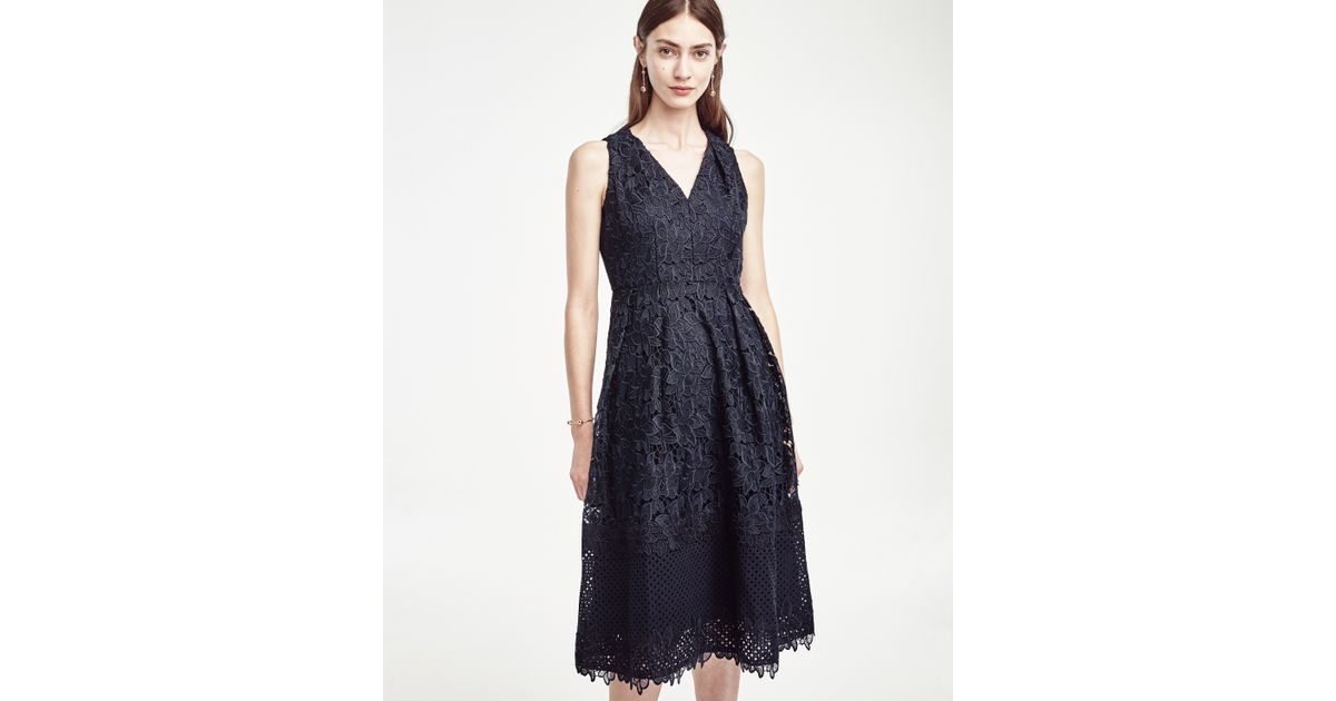 Ann Taylor Floral Lace Flare Dress In Blue Lyst