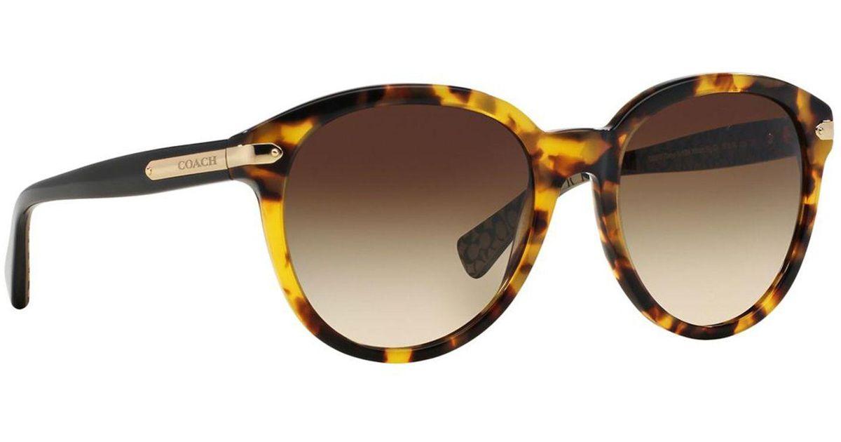 9fc05a54d83da ... get coach brown hc8140 round sunglasses in black lyst 39381 24e3f