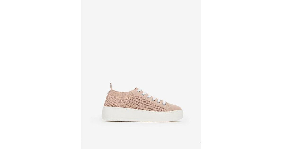 203a02633b1 Lyst - Express Steve Madden Bardo Sneakers in Pink