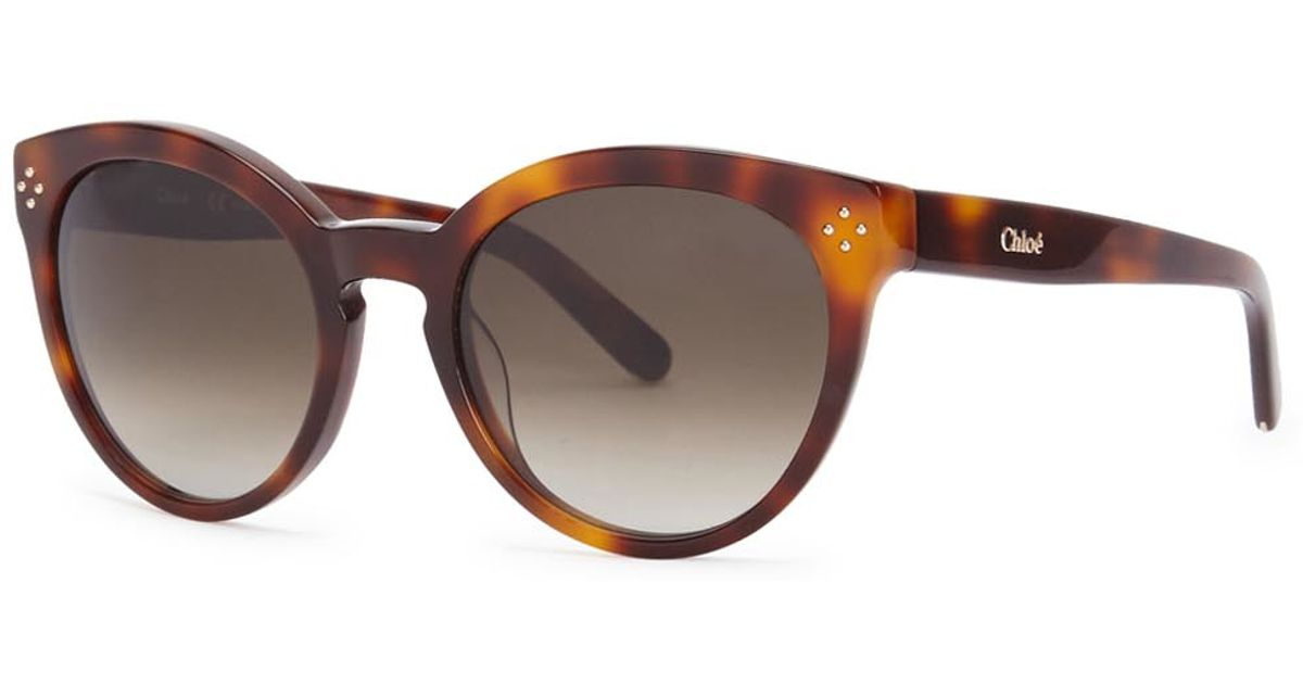 b5e14905f5d Chloé Boxwood Tortoiseshell Oval-frame Sunglasses in Brown - Lyst