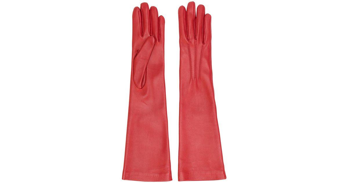 longitud de guantes Jil Sander media qfvtnZEn