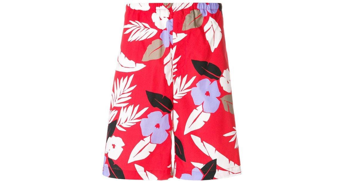 floral print Bermuda shorts - Red Msgm GKO4vWn7