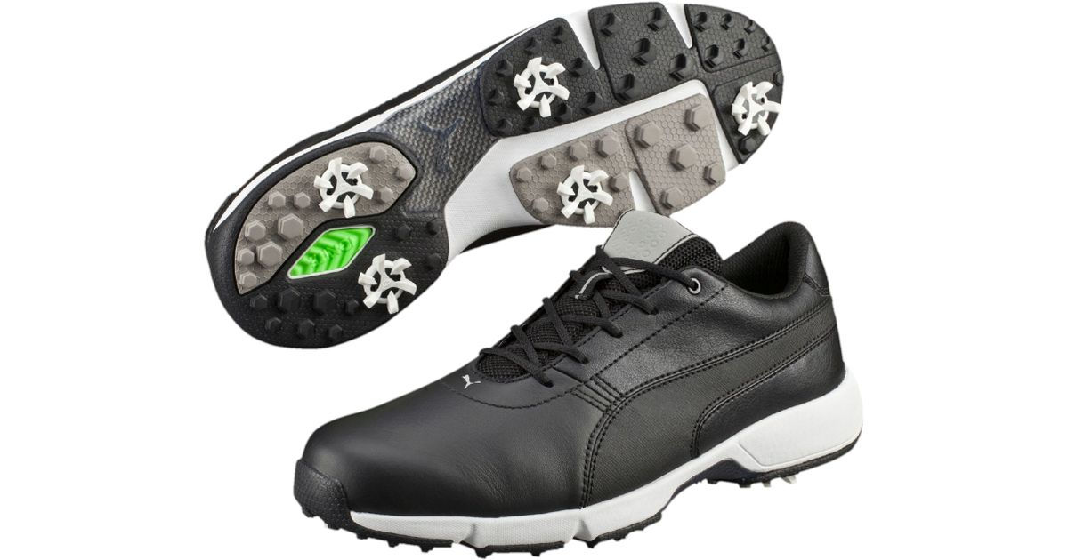 House Of Fraser Golf Shoes