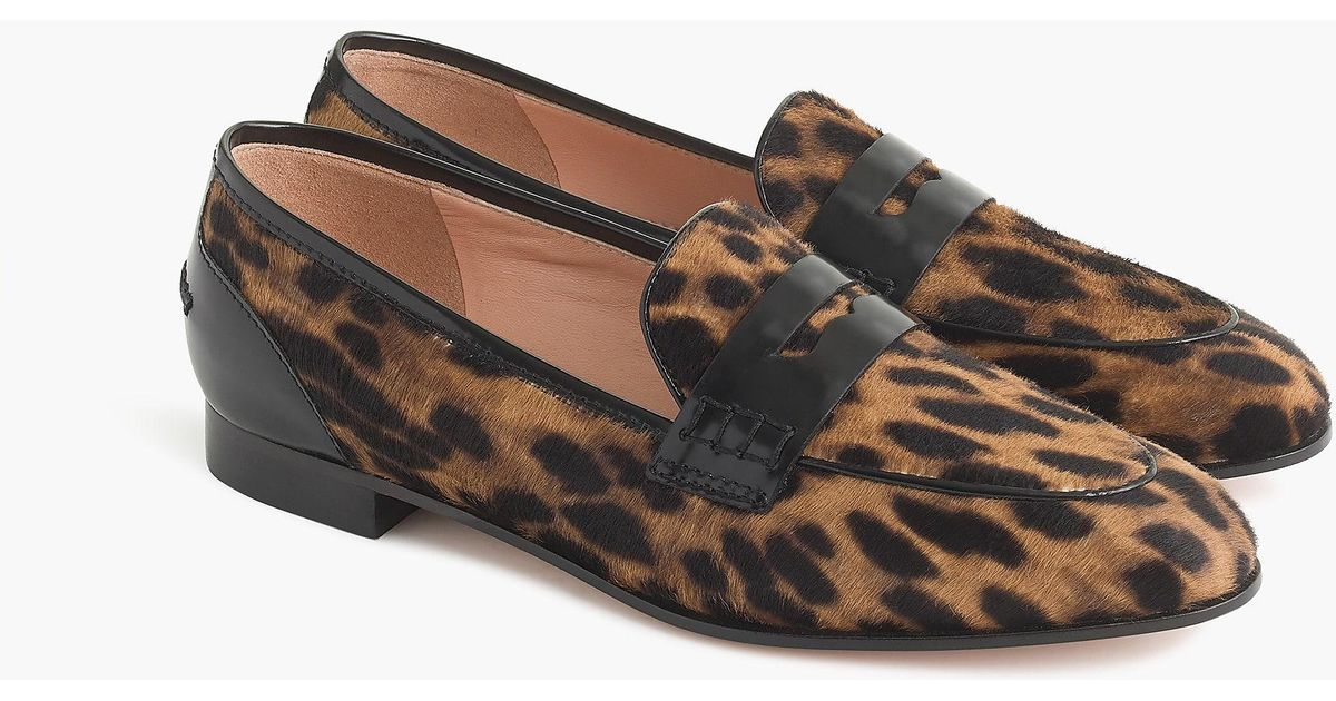 0d05d98cdcd Lyst - J.Crew Academy Penny Loafers In Leopard Calf Hair in Brown