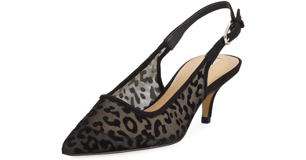 0dd06c6a7a6 Lyst - Elie Tahari Saint Leopard Mesh Kitten-heel Slingback Pumps in Black