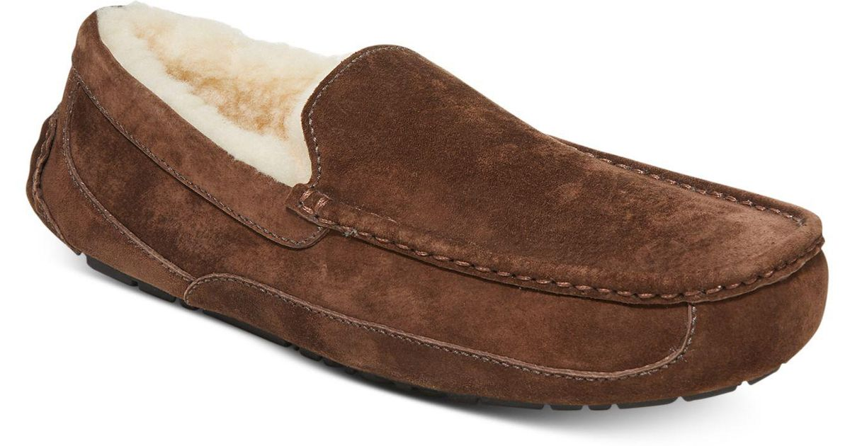 65cd5cdf056e Lyst - UGG Men s Ascot Slippers in Brown for Men