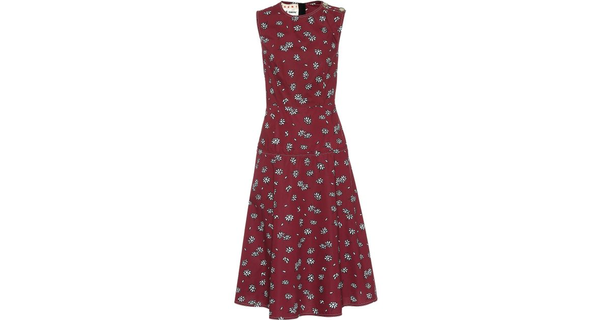 Daisy cotton dress Marni oUXdm7HF