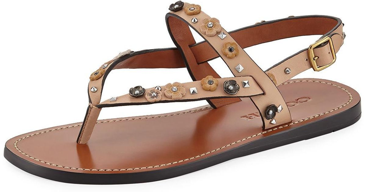 bf59237a8 Lyst - COACH Hudson Tea Rose Flat Thong Sandal in Natural