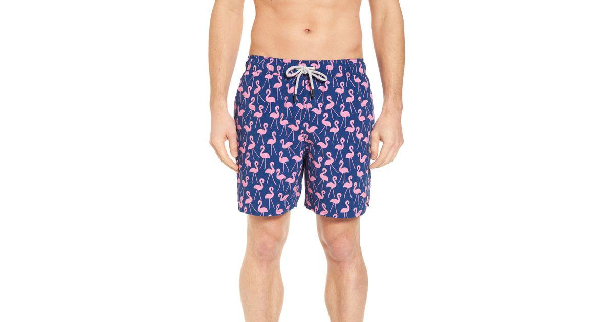 4c1b311d16d Lyst - Tom & Teddy Flamingo Print Swim Trunks in Blue for Men