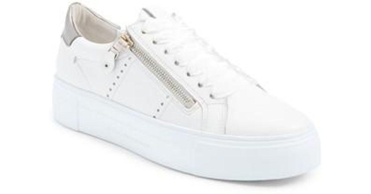 Big, Womens Low-Top Sneakers Kennel & Schmenger