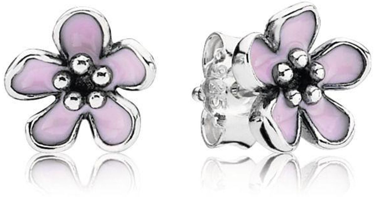 Pandora Pink Cherry Blossom Flower Stud Earrings In Pink Lyst
