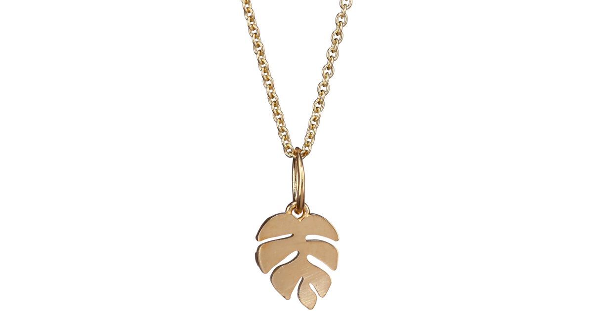 pendant necklaces necklace gold nature real leaves long item unique statement silver fashion leaf charm jewelry women in from sweater hot