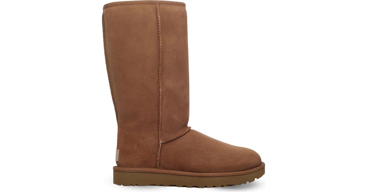 ugg boots brown tall - photo #15