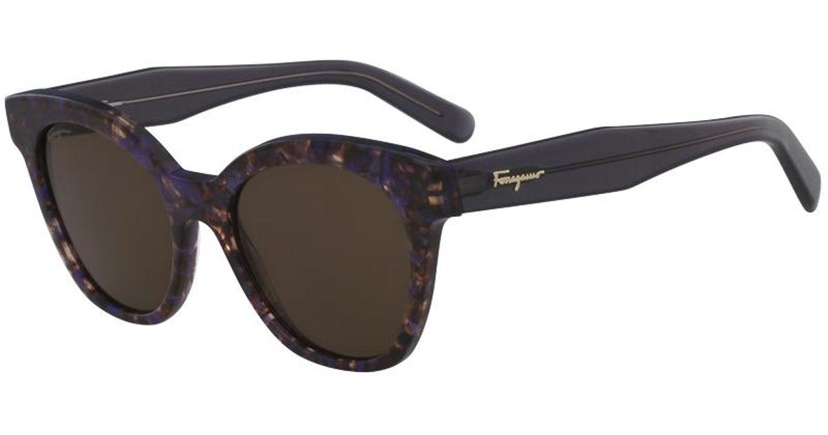 68a435c09d Ferragamo - Black Violet Havana Sf877s Cat Eye Sunglasses - Lyst
