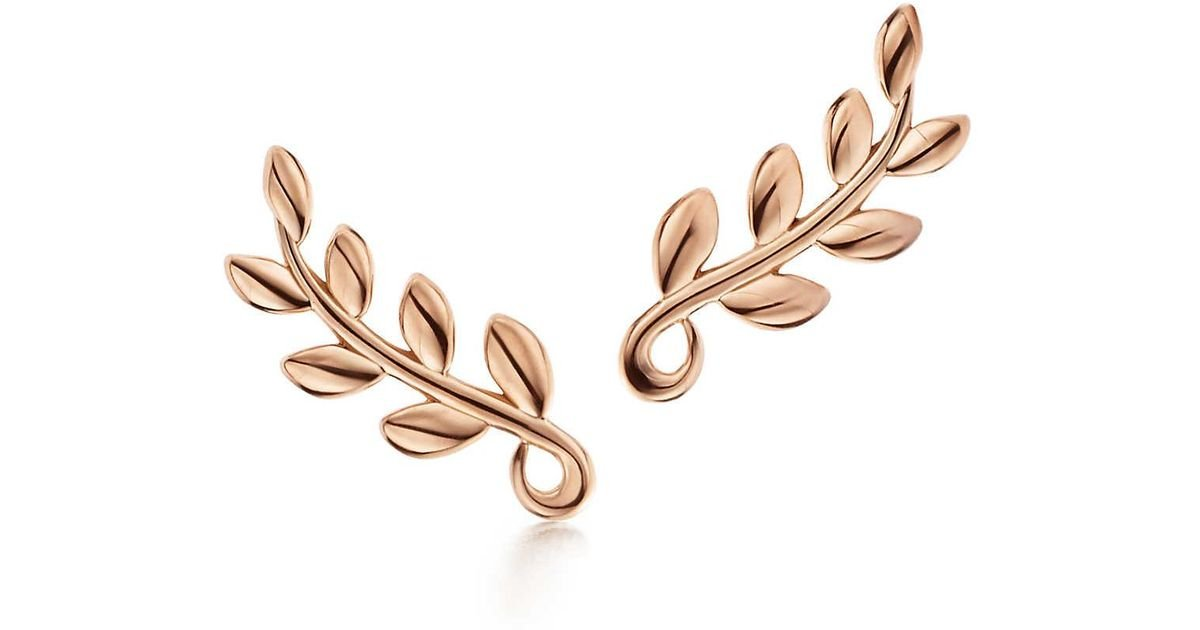 Paloma Picasso Olive Leaf climber earrings in 18k gold Tiffany & Co. C3SoM4