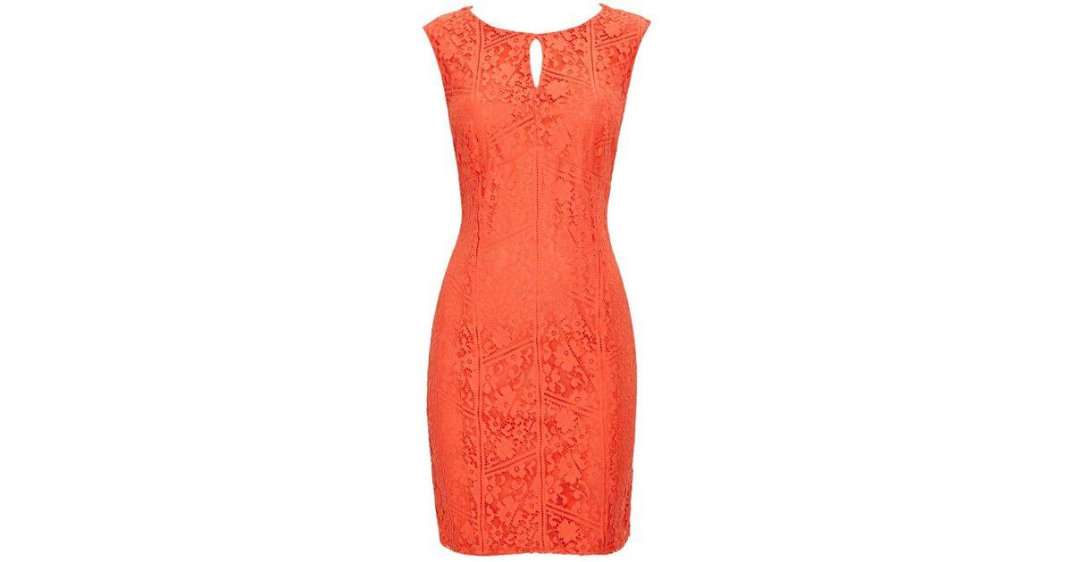 a856f57519 Wallis Petite Coral Lace Shift Dress - Lyst