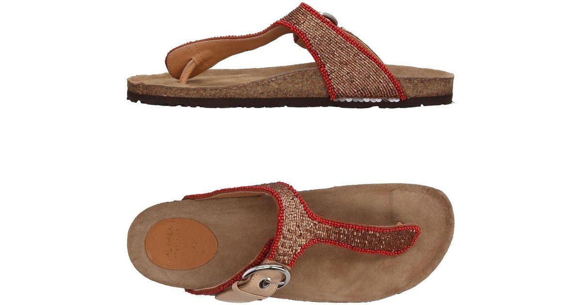 FOOTWEAR - Toe post sandals Maliparmi NI0TrtcbEY