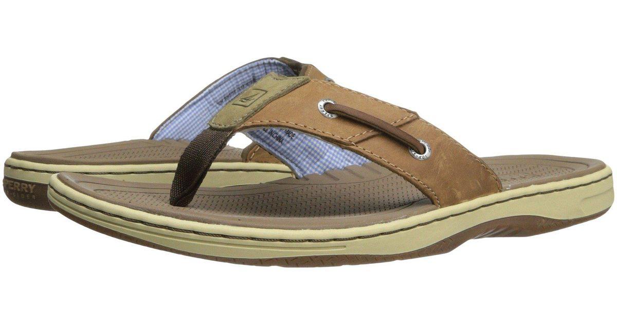 d823894ff48 Lyst - Sperry Top-Sider Baitfish Thong (brown) Men s Sandals in Brown for  Men