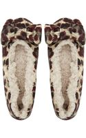 Ruby And Ed Beige Leopard Velvet Bow Ballerina Slippers - Lyst