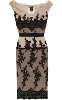 Collette Dinnigan Mirabella Lace Cocktail Dress - Lyst