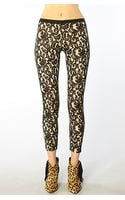 Stylestalker The Panther Lace Pants - Lyst