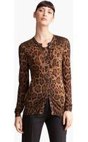 Dolce & Gabbana Leopard Print Cardigan - Lyst