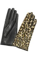 Forzieri Womens Leopard Pony Hair and Italian Nappa Leather Gloves - Lyst