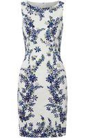 Hobbs Lupin Print Dress - Lyst