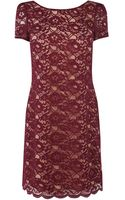 Oasis Lizzy Lace Shift Dress - Lyst