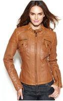 Michael Kors Leather Bucklecollar Motorcycle Jacket - Lyst
