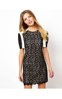 Asos Premium Mini Shift Dress with Contrast Lace - Lyst