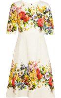 Dolce & Gabbana Floralbrocade Dress - Lyst