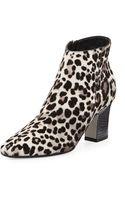 Tamara Mellon Leopardprint Midheel Ankle Boot - Lyst