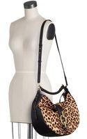 Diane Von Furstenberg Sutra Leopard Haircalf Hobo Handbag - Lyst