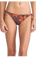 Tallow Mudhoney Bandeau Bikini - Lyst