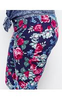 Asos Curve Exclusive Legging in Vintage Floral Print - Lyst
