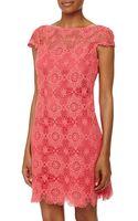 Ali Ro Capsleeve Lace Shift Dress - Lyst